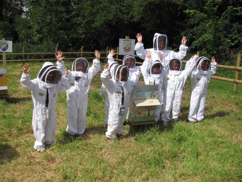 Ferques, ruchers, ruches