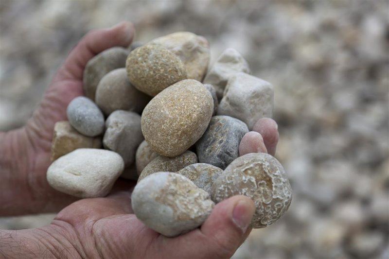 gravillon, gravillon calcaire