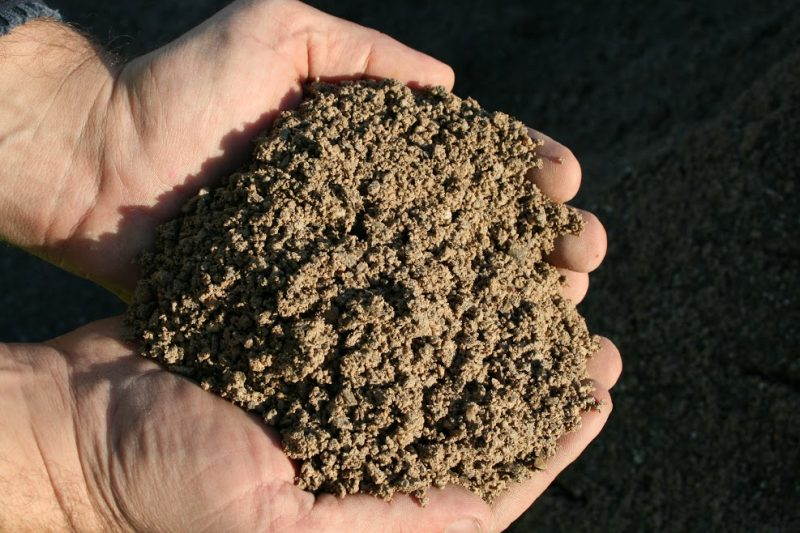 sable, sable sec